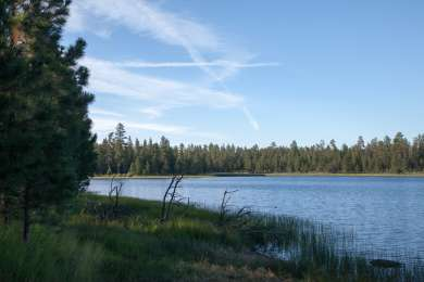 Delintment Lake Campground