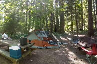 Moss Creek Campground