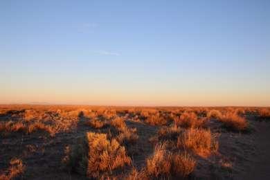 Winter desert morning all to ourselves
