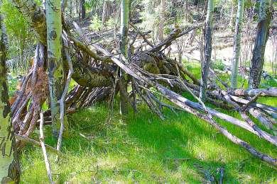 Deerhead Campground