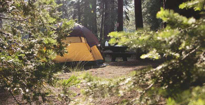Camping Near Lake Tahoe The 20 Best Campgrounds Hipcamp