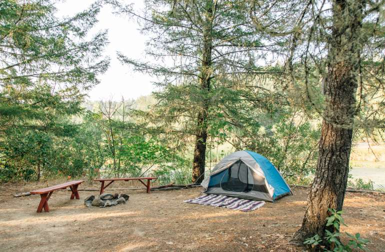 Campsite at Mill Pond