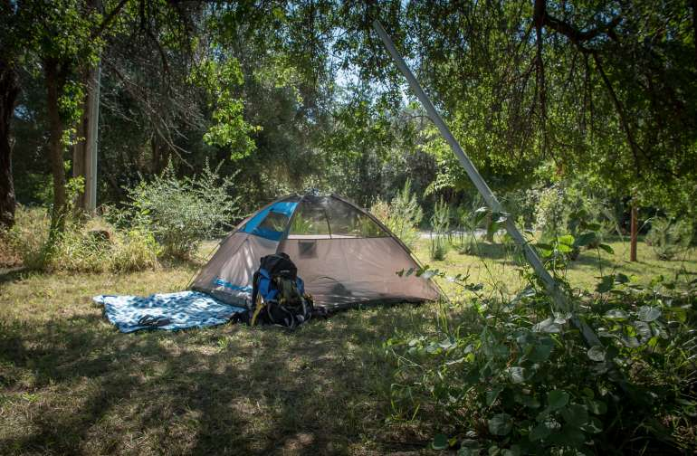 Best spot to put your tent is under the walnut tree so you wake up in the shade!