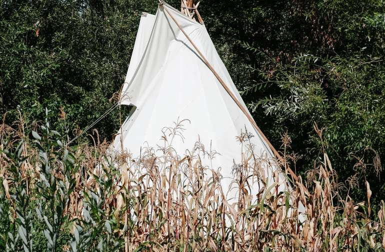 The tee pee is hidden behind a long line of trees but you can see it peeking out from the neighbors yurt next door through the garden.