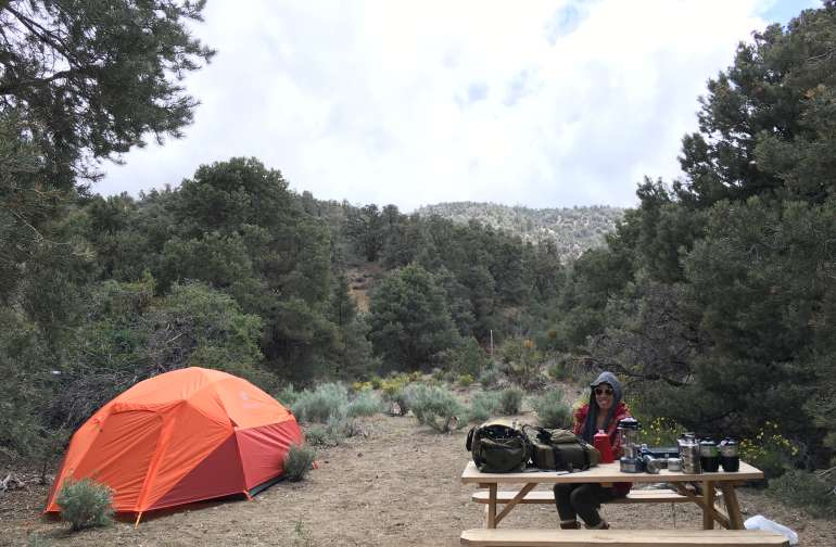 Our private camp site is just a short drive up the hill from the barn, surrounded by piñon pines for morning & afternoon shade. There is room for 2 large or several small tents and a picnic table is on site. Shade trees on morning and afternoon sides.