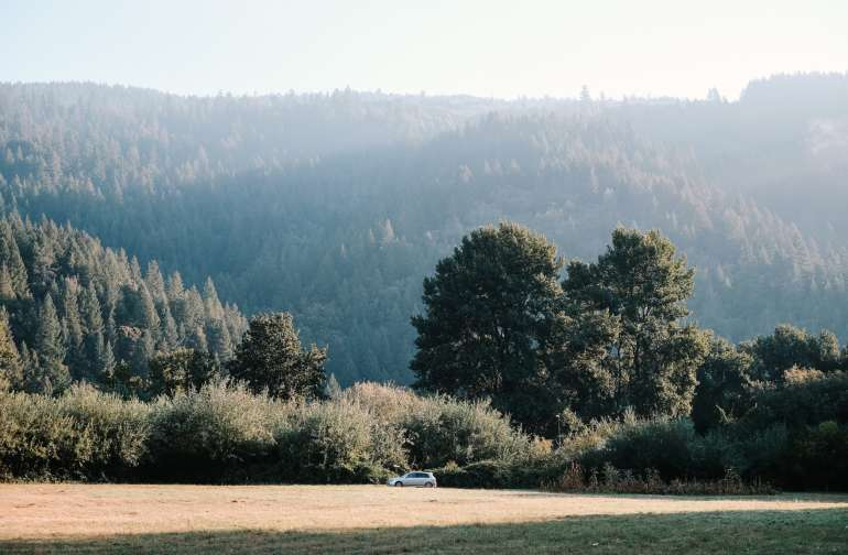 Beautiful early morning view of the meadow! Photo by Jay Kijai.