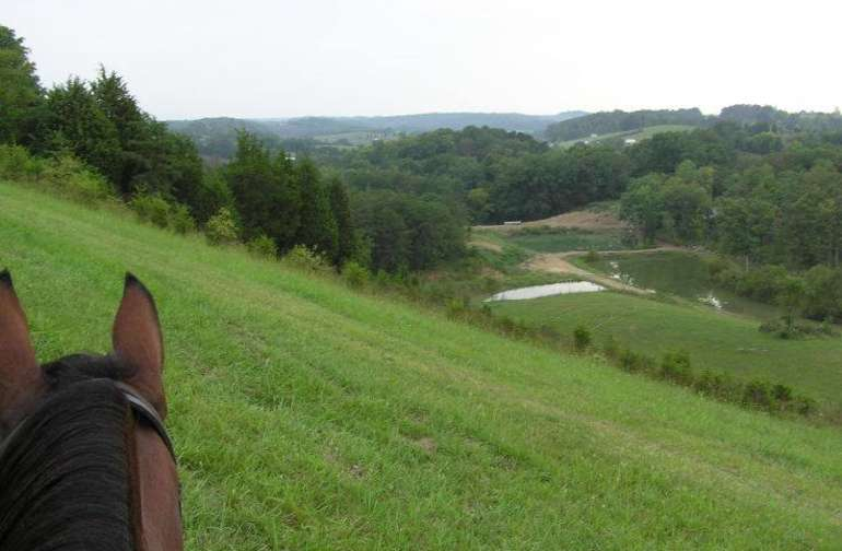 Magnificient view from the tallest hill on the farm.