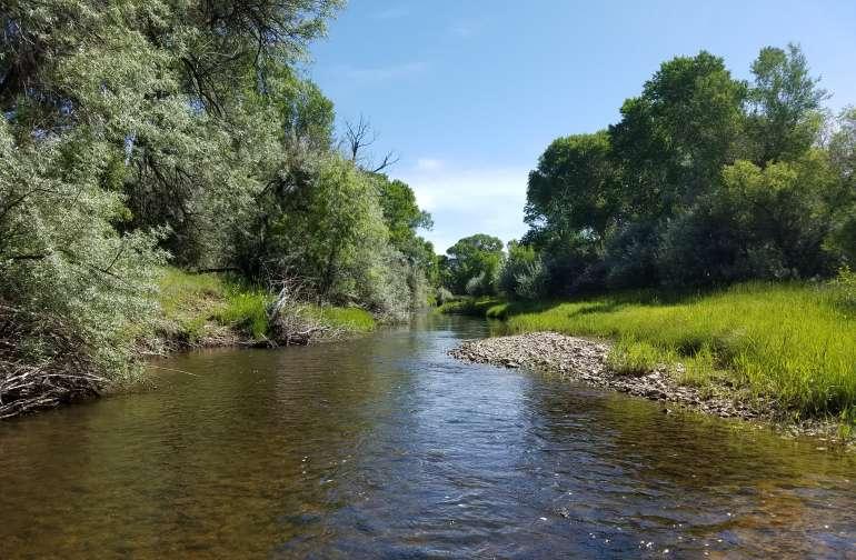 Creek & Cottonwoods RV Camping