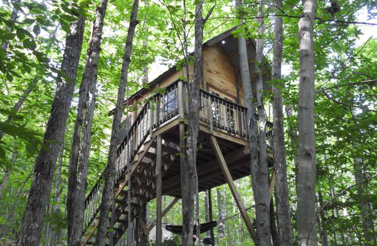 The Birdie Treehouse