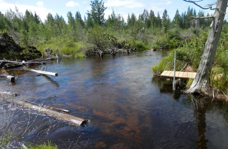 Best Camping in and Near Huron-Manistee National Forests