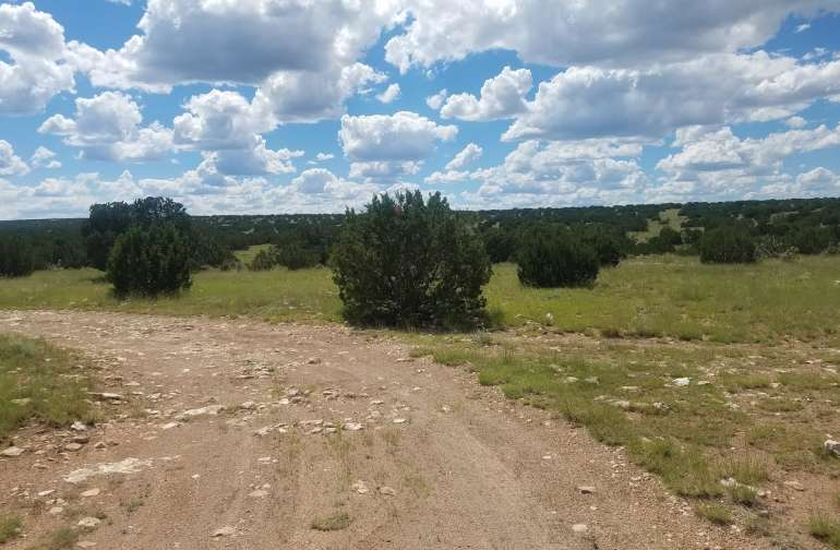 This is the North East corner of the property and the property is straight ahead.