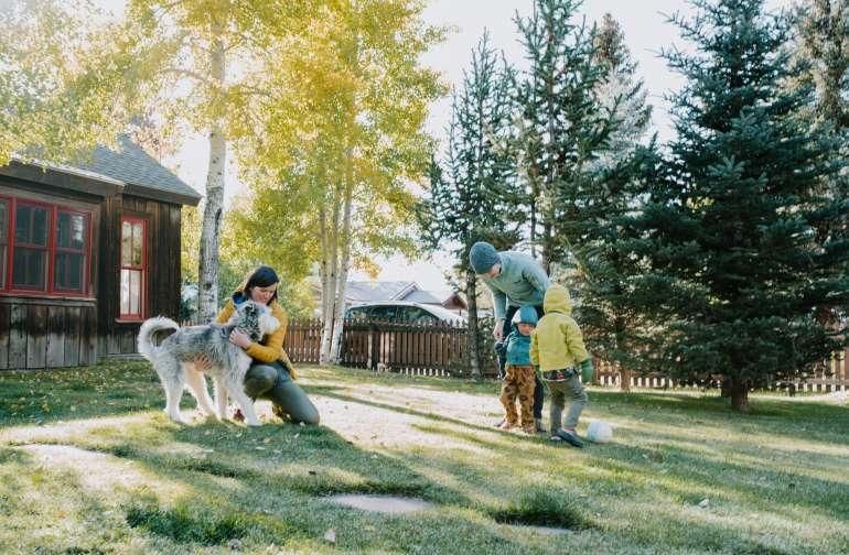 cabin people dog