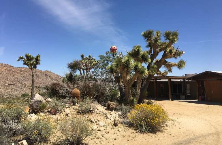 Atomic Trailer Ranch