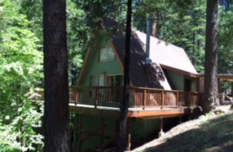 Dog Woods Cabin nestled against Big Trees State Park