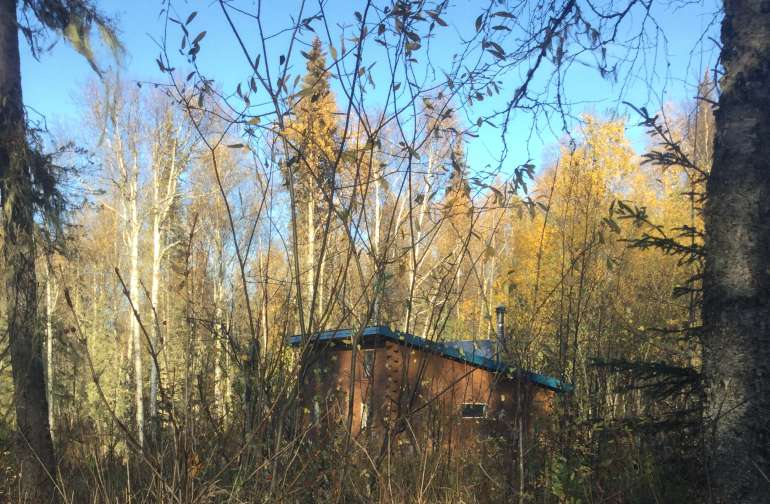 This is Talkeetna Jo's Dry Cabin, late Summer.