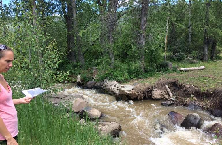 Creek Side Clearing