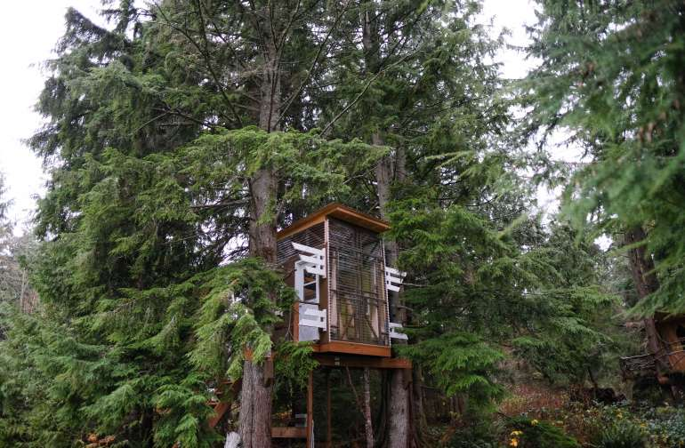 The Hashtag Treehouse!