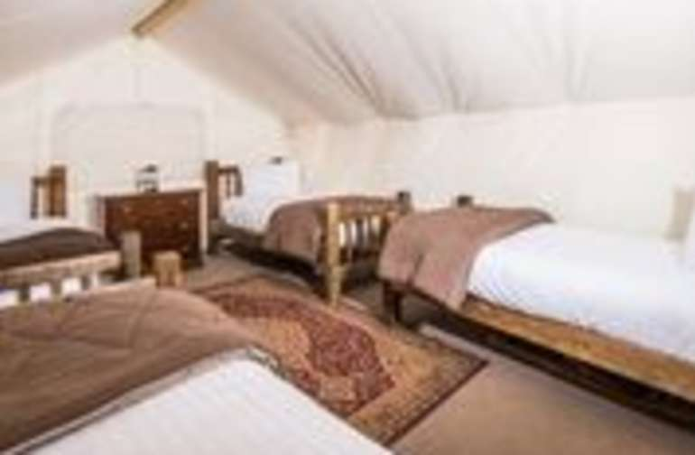 Moab Safari Tent 4 Twin Beds