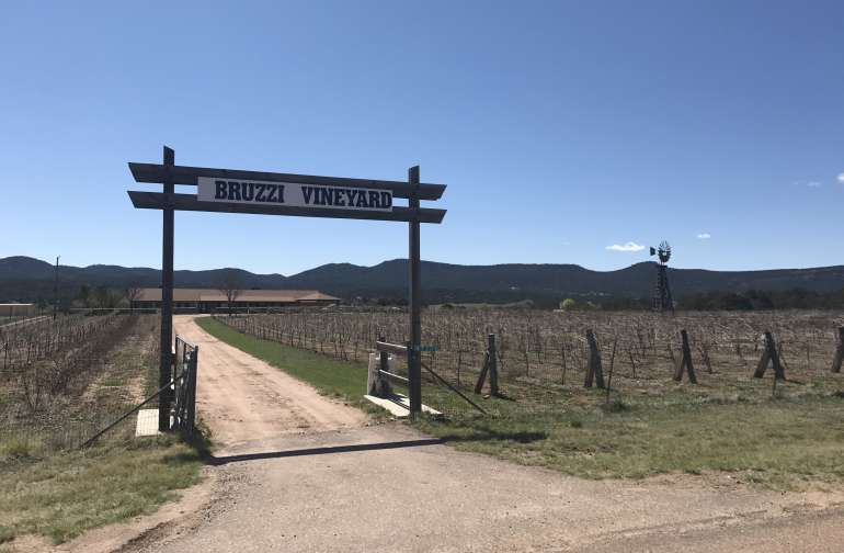 Arizona Mountain Vineyard