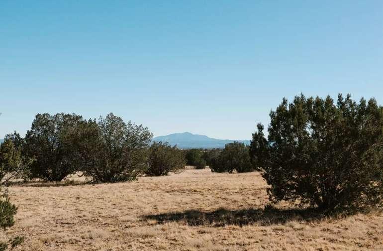 Antelope Run Dispersed Camping
