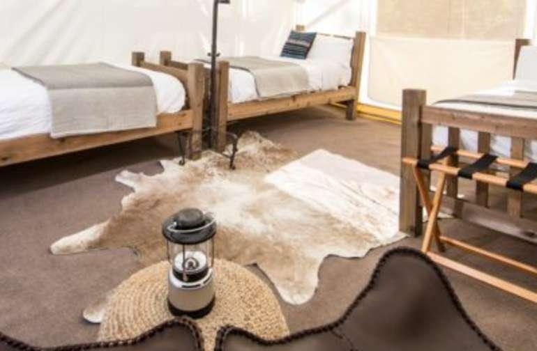 Yellowstone Safari 3 Twin Beds