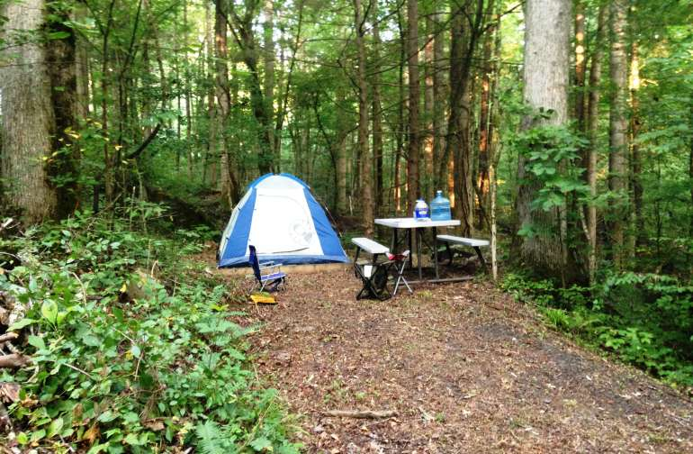 Campsites are nestled in the woods and have tent pads, tables and fire pits with grill.