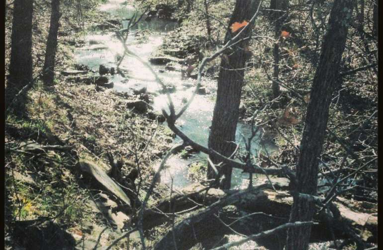 Cross Timbers Forest Camping