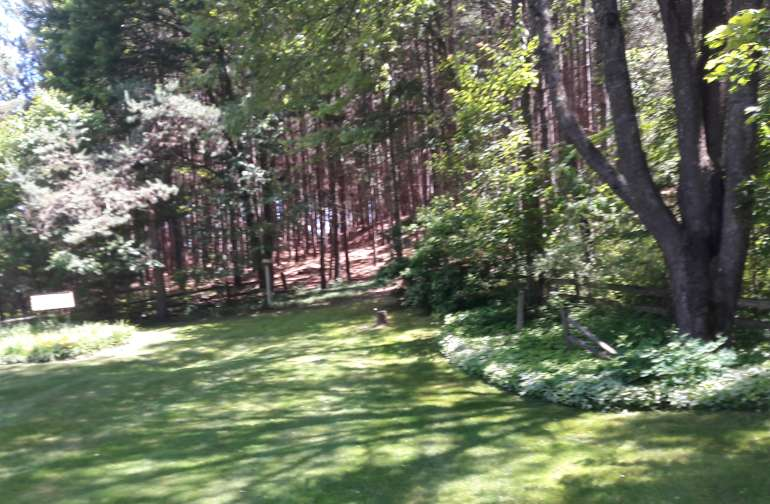 Looking from the back deck to the outside perimeter of the backyard