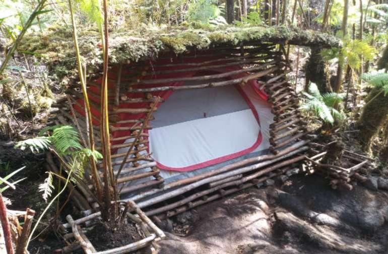 Guava Tree Camping Pod