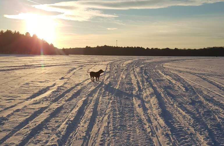 Just over a mile away this is Mayfield Lake if you bring your sled the trails right out in front of the house all the way up into Canada