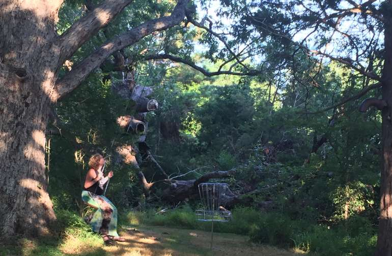Another sweet swing and the oldest of the oak trees on the property! Disc golf basket shown too!