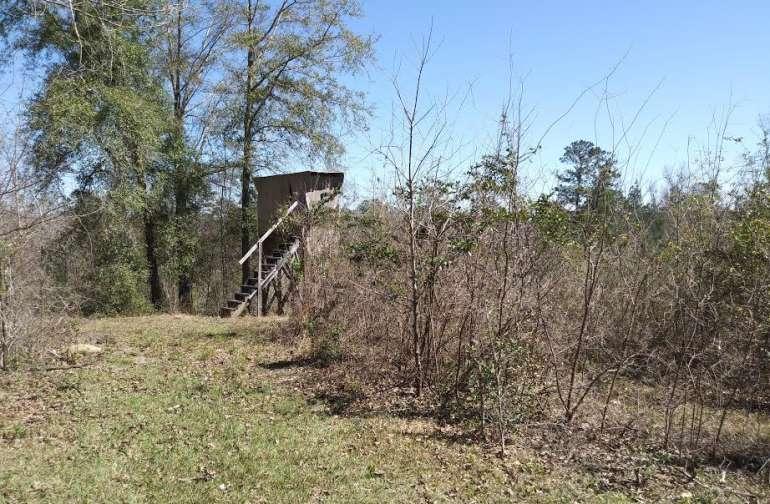 Murchison Farm  Where nature Rules!