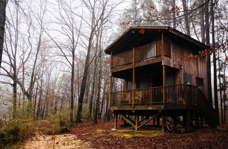 cabin forest lodging