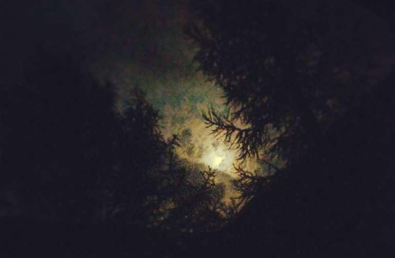 Beautiful Moonrise on the farmstead