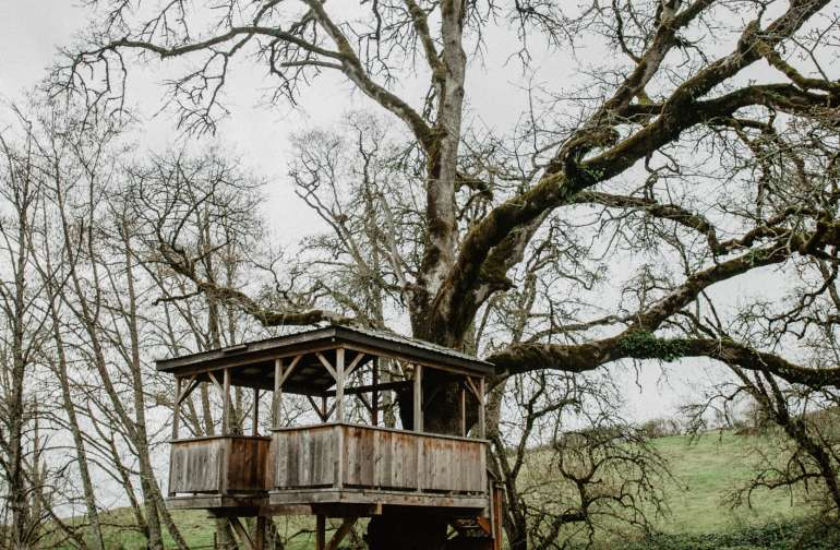 This treehouse is so cool