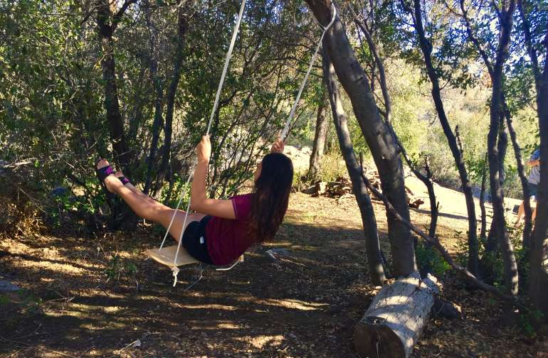Swing among the trees