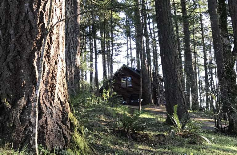 SKY & TIMBER LOFT CABIN / Secluded Oregon Country Nature Retreat