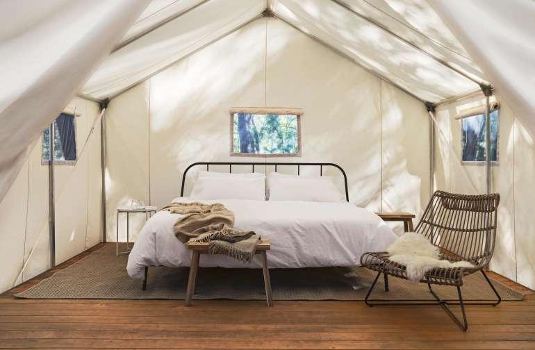 Shelterwood- Maple Landing Camp