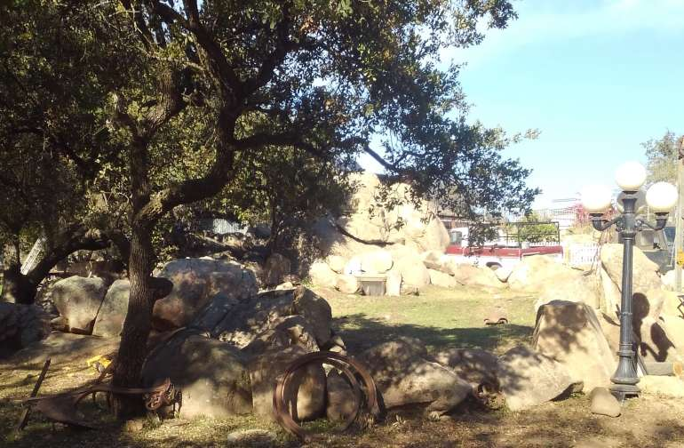 The Tortoise yard