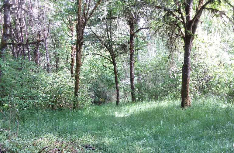 Woodland Hills Ranch.