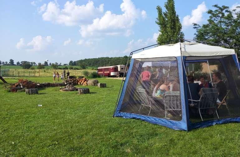 Summertime on the farm.