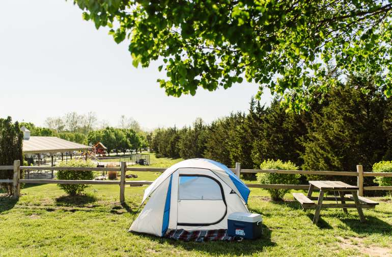 tent forest picnic table