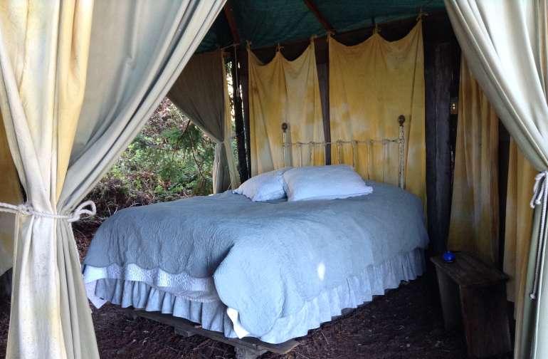 Redwood Room Gazebo