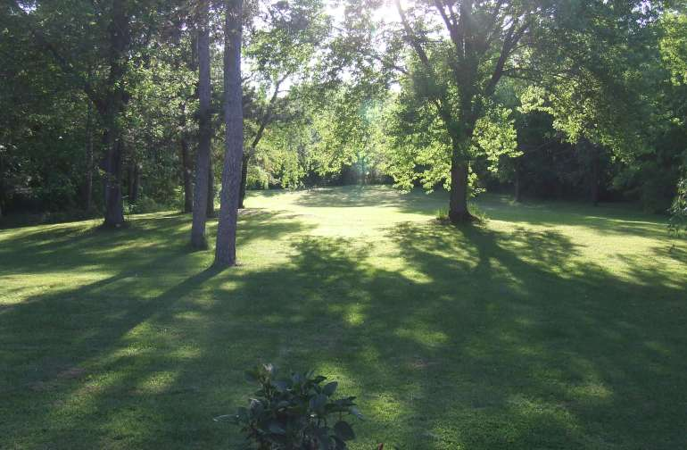 Back yard open lawns and shady groves