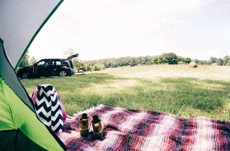 Primitive Campsite #1