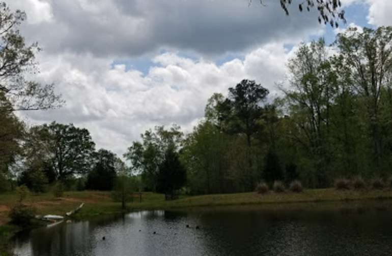 Pond for fishing: brim, catfish (please only keep what you need)
