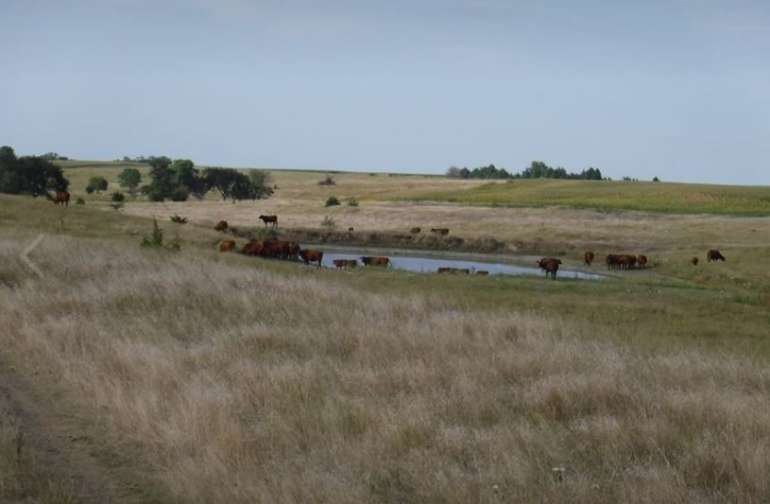 West pasture and fields