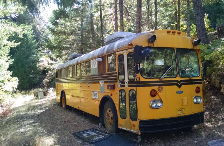 Yellow School Bus welcomes you into the forest for a one-of-a-kind camping experience.