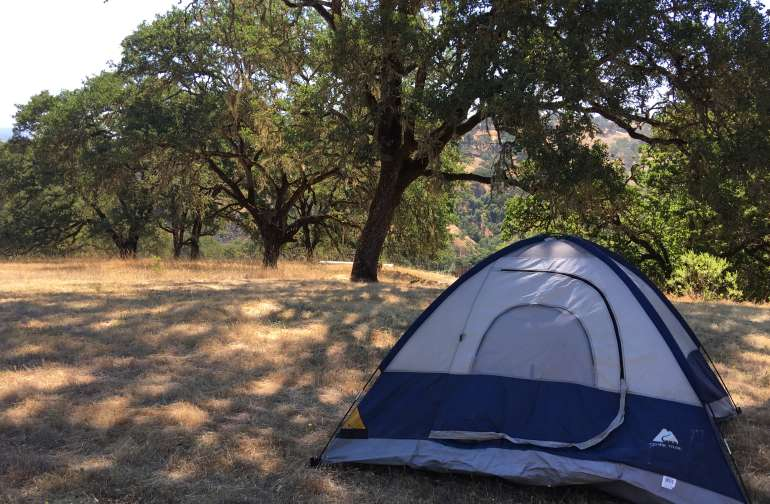 camping meadow site #3