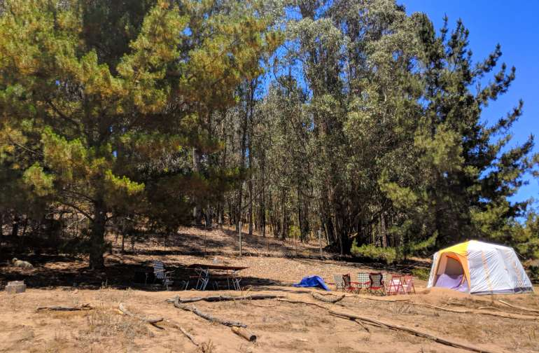 The main site, complete with a Coleman Octagon 6-8 person tent, fire ring and grill, and picnic table.